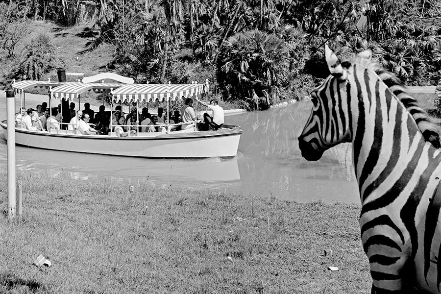 The Jungle Cruise at Disneyland